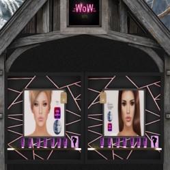 wow skins