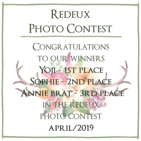 Photo Contest April 2019 - Winners