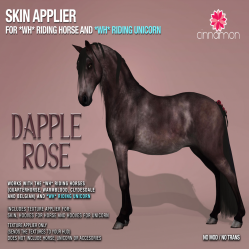 Cinnamon - WHRH & WHRU - Dapple Rose